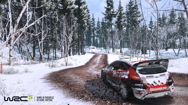 WRC5-Screenbatch2-2-Solberg-Sweden